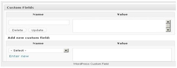 Utilizing WordPress Custom Fields