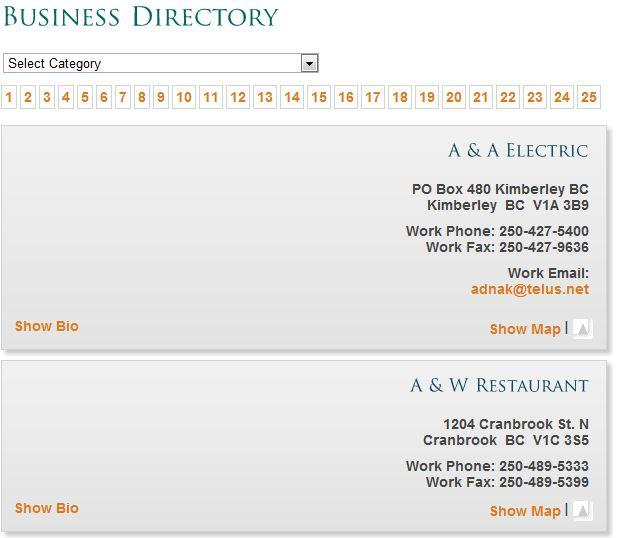 Preview of Business Directory created through Connections Plugin