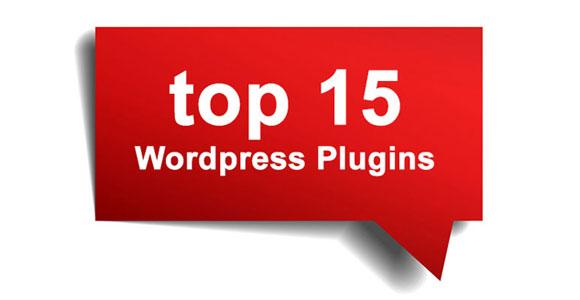 Top Wordpress Plugins-2013
