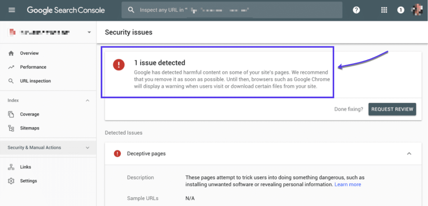 Google Search Console Security Issues