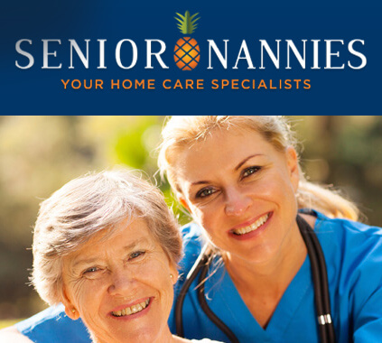 Senior Nannies - Custom WordPress Theme Development - WordpressIntegration Client